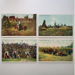 historic hemp postcards set of 8 - 4-hemp-postcards-group-1-product-image