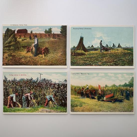 historic hemp postcards set of 8 - 4-hemp-postcards-group-1-product-image