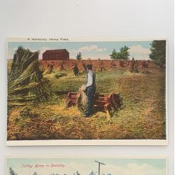 historic postcards, historic hemp postcard 1 - a-kentucky-hemp-field-product-image