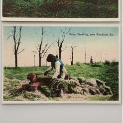 vintage style postcards - historic hemp postcard 7 hemp-breaking-near-frankfurt-kentucky-product-image