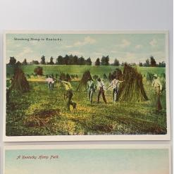 antique style postcards - historic hemp postcard 6 shocking-hemp-in-kentucky-product-image