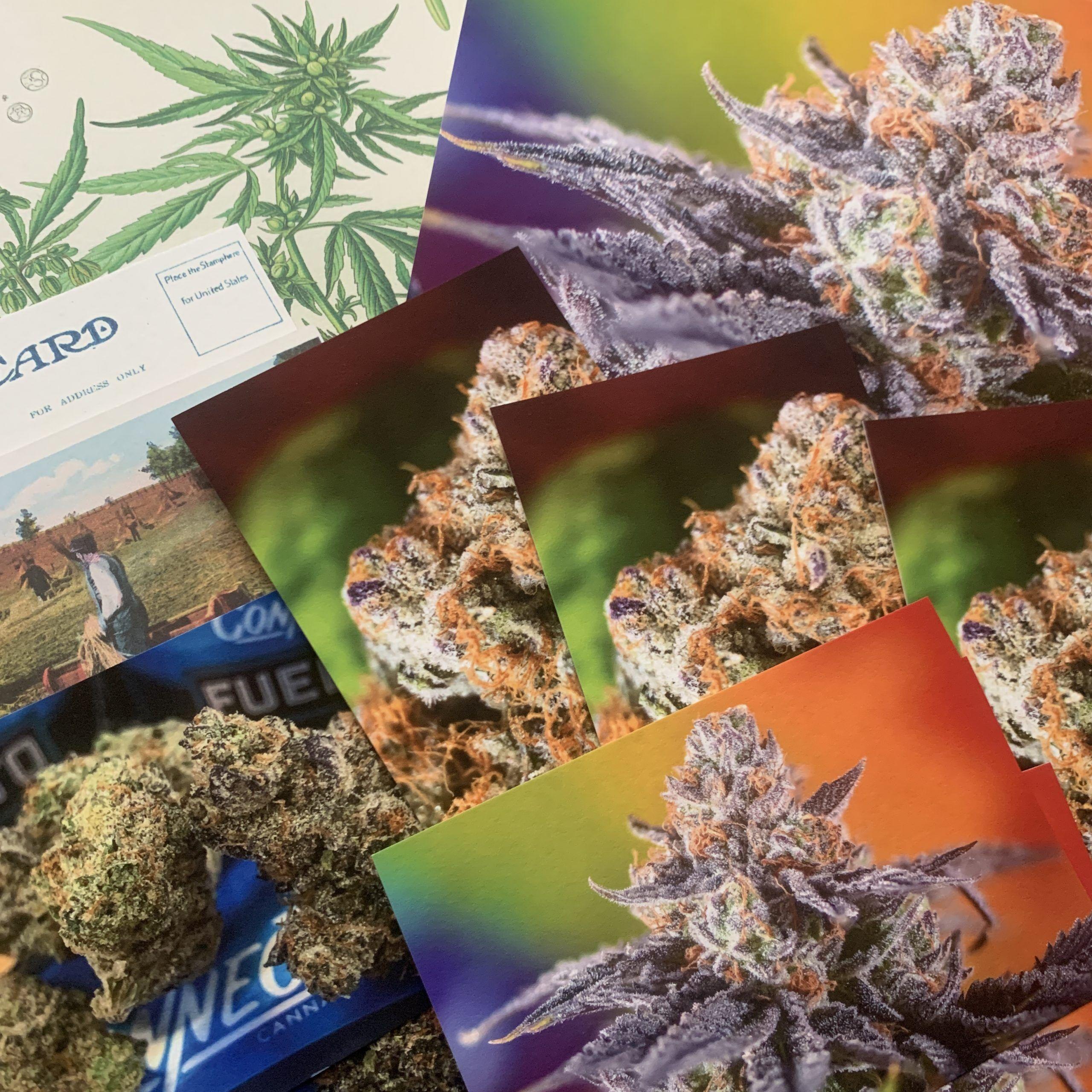 hemp fine art prints, cannabis photography, prize packs, hemp paper prints, custom hemp prints catalog archive