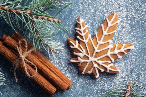december 2020 photo contest - december-2020-photo-contest-christmas-cannabis-gingerbread-cookie-cinnamon-pine-AdobeStock_392758077