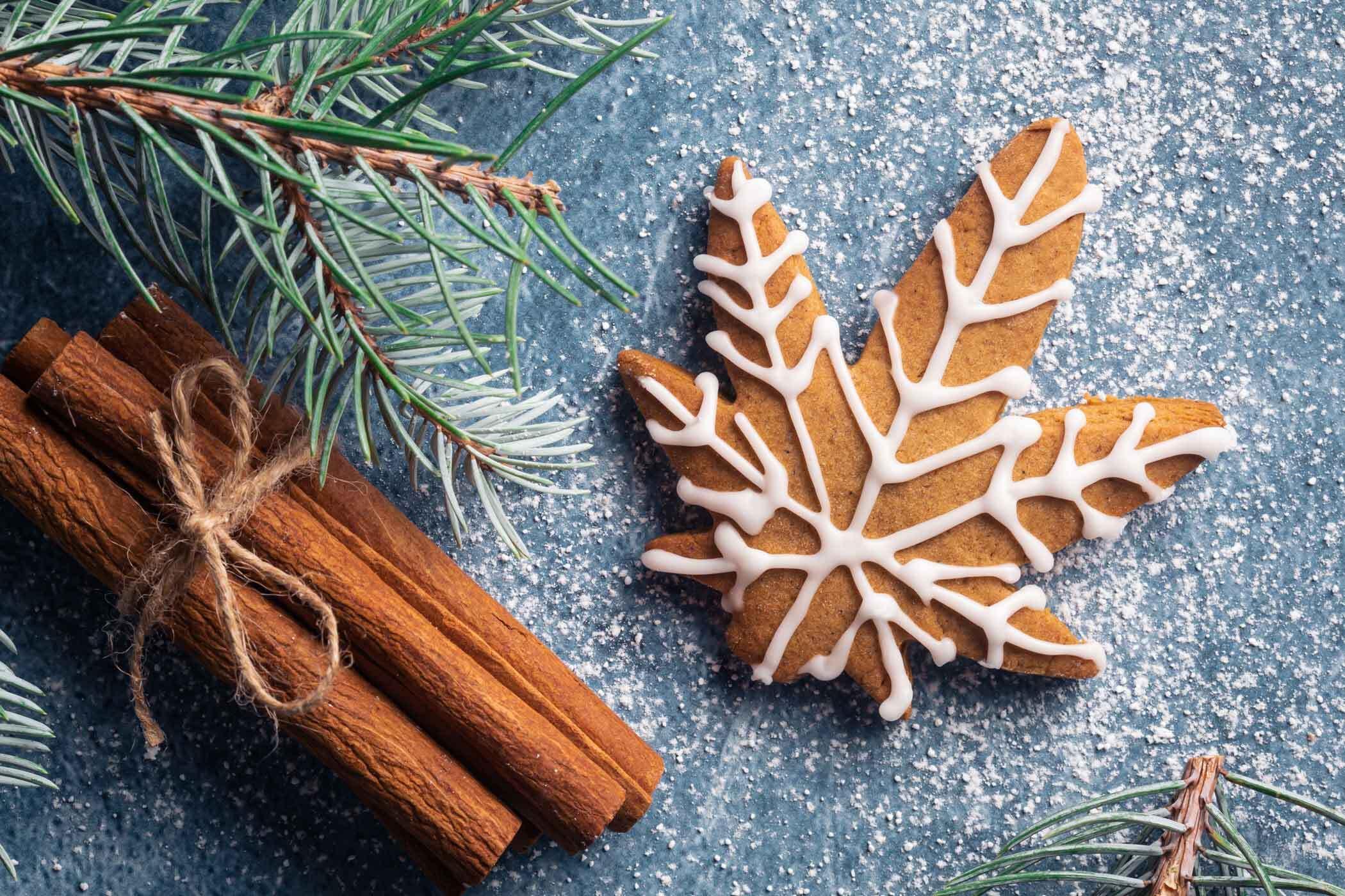december 2020 photo contest - december-2020-photo-contest-christmas-cannabis-gingerbread-cookie-cinnamon-pine-AdobeStock_392758077
