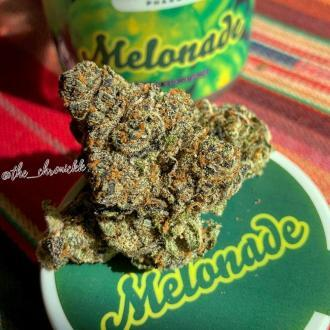 Don't Touch My Melons .. MELONADE By North Country