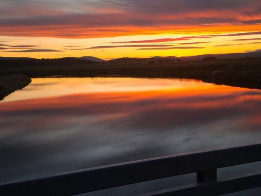 September 2021 photo contest winners - Oregon Cannabliss