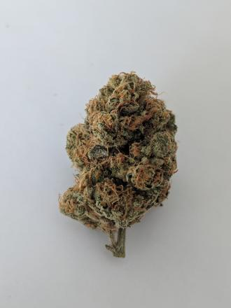 Sour Kush- Breeder Cut