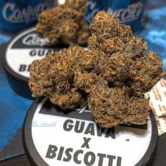 Guava Biscotti By Connected Cannabis Co